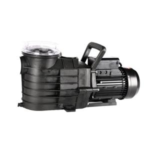 Starke Pro X Series Dual Speed 2hp Swimming Pool Pump Self Priming Auction Graysonline