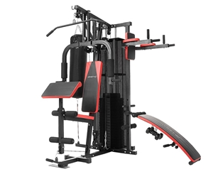 Powertrain Multi-Station Home Gym - with
