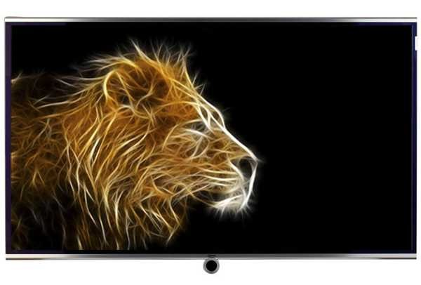 Loewe Individual 40-inch Full HD LED LCD TV (Silver) (52401B43)