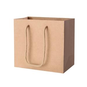 50pcs Kraft Paper Carry Bags Shopping Gi