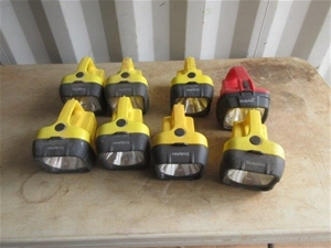 8 x Eveready Dolphin Torches