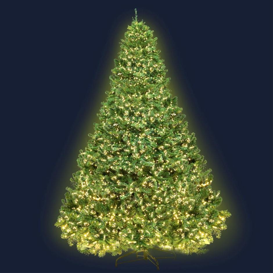 Jingle Jollys 2.4M 8FT Christmas Tree Xmas 3190 LED Lights Warm White 1436
