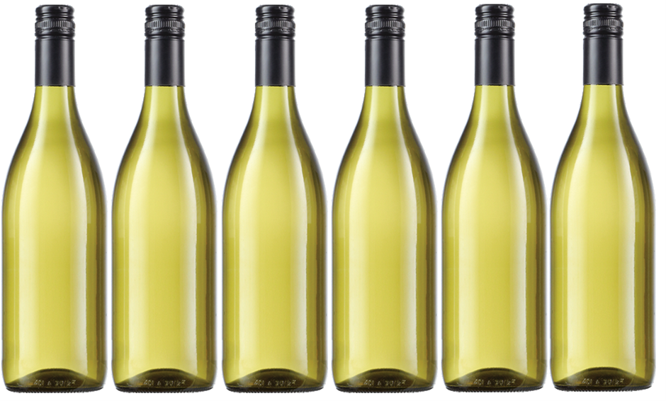 McWilliam's Single Vineyards Chardonnay 2016 Cleanskin (12 x 750mL). NSW