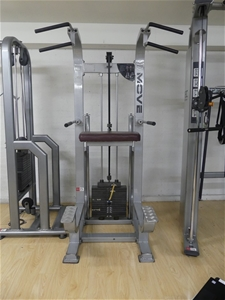 MOVE LM-3113 Chin Up Machine