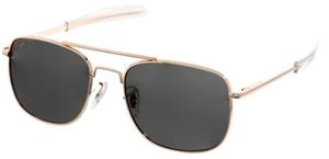 HUMVEE Polarised Sunglasses Gold Frame/