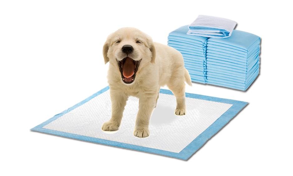 PaWz 400 Pcs 60x60cm Ultra Absorbent Pet Dog Cat Toilet Training Pads