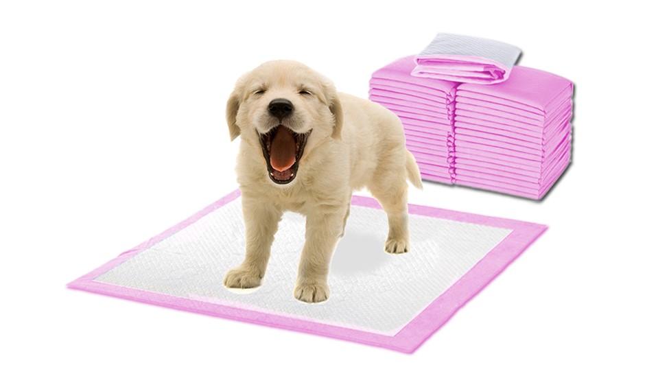 PaWz 400 Pcs 60x60cm Ultra Absorbent Pet Dog Cat Toilet Training Pads Pink