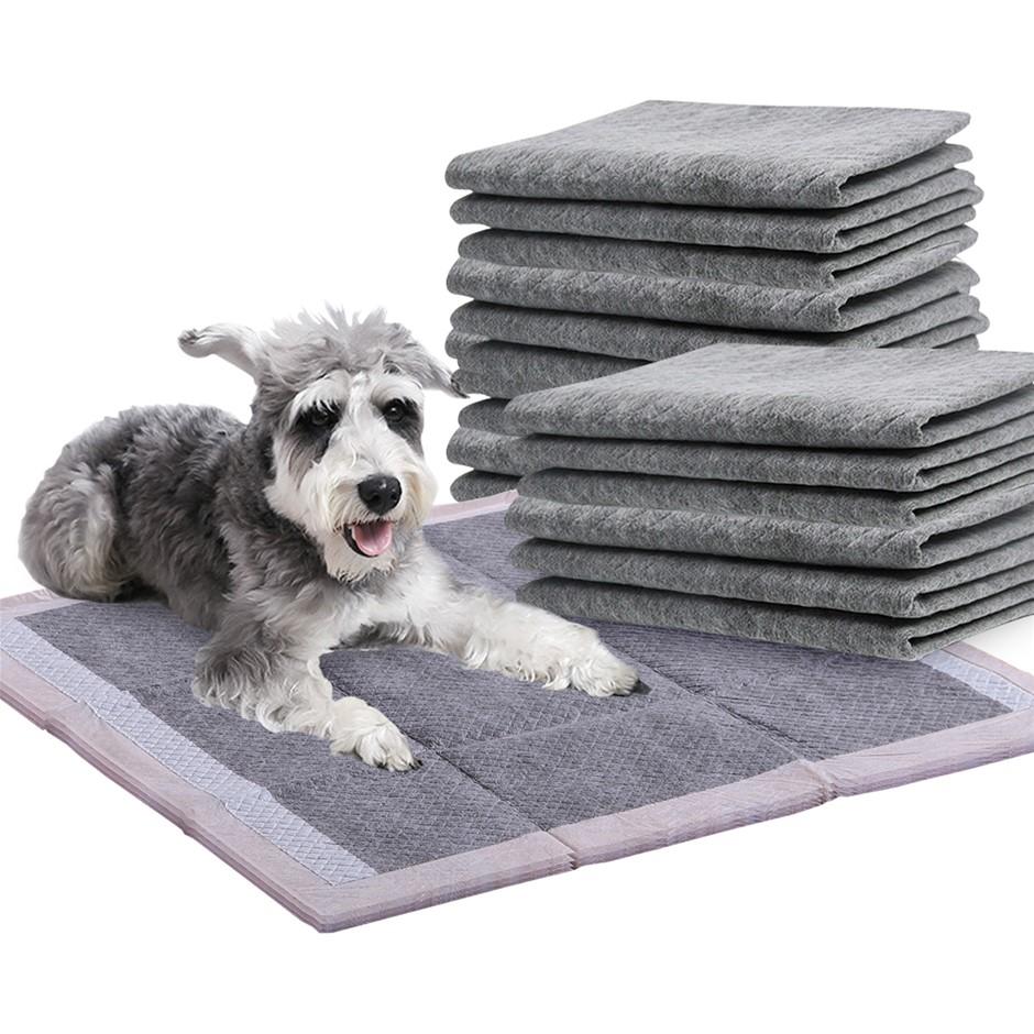 PaWz 200 Pcs 60x60cm Charcoal Pet Dog Toilet Training Pads Ultra Absorbent