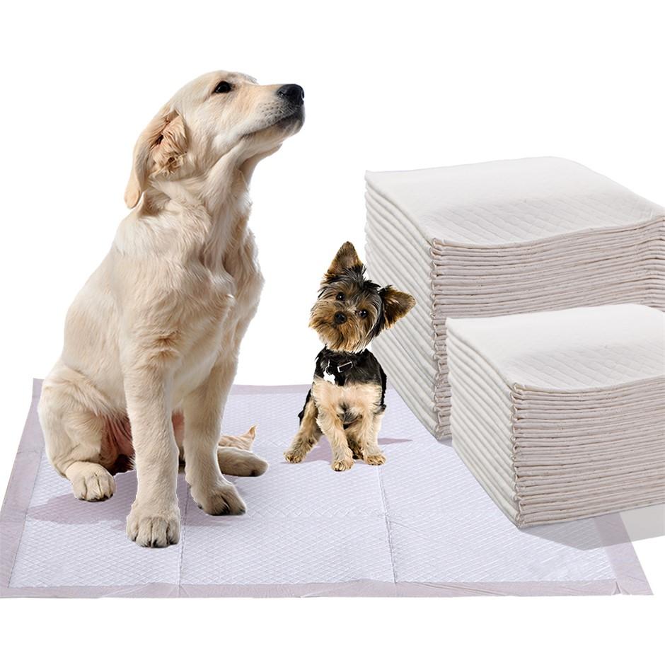 PaWz 200 Pcs 60x60 cm Pet Dog Toilet Training Pads Absorbent Meadow Scent