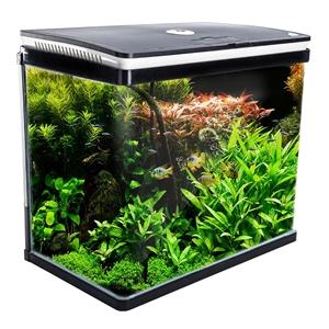 52L Curved Glass RGB LED Aquarium Fish T