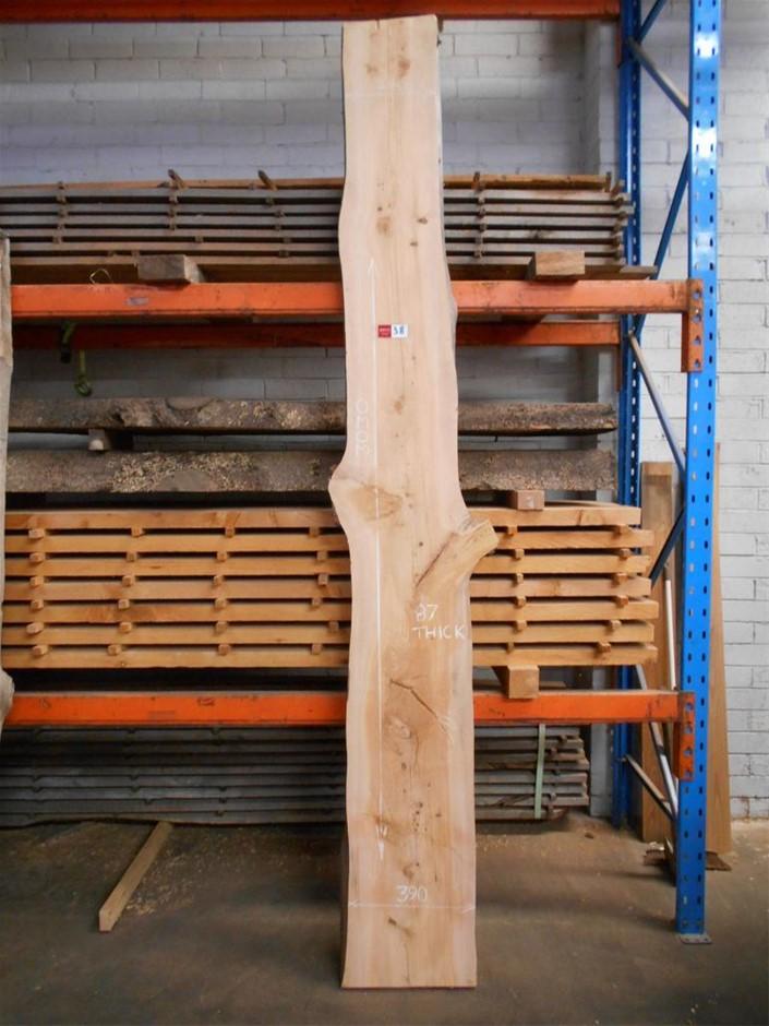 Large Timber Slab - Deodar (Himalayan) Cedar