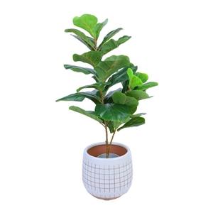 Faux Artificial Potted Fiddle Fig Plant