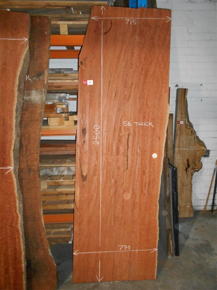 Very Large Timber Slab - River Red Gum
