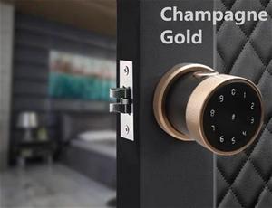 Smart Door Lock - Champagne Gold
