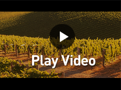 Winemaker video